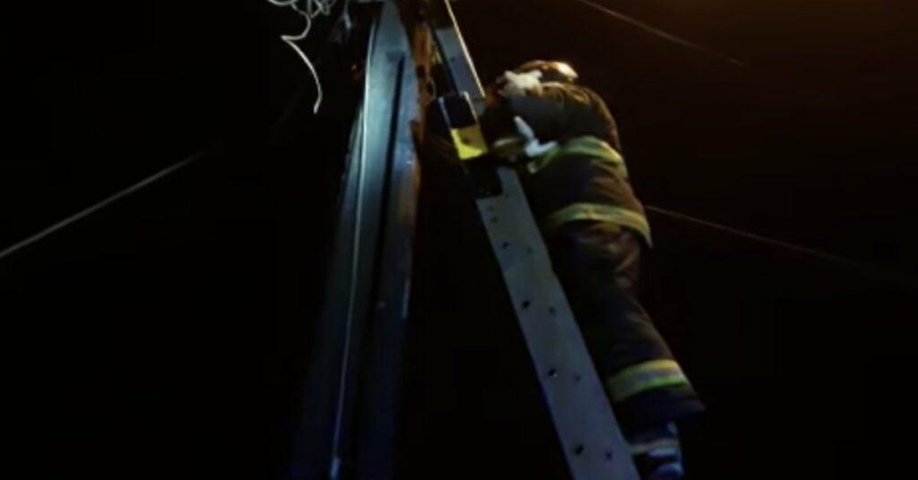 pompiere su scala salva gatto