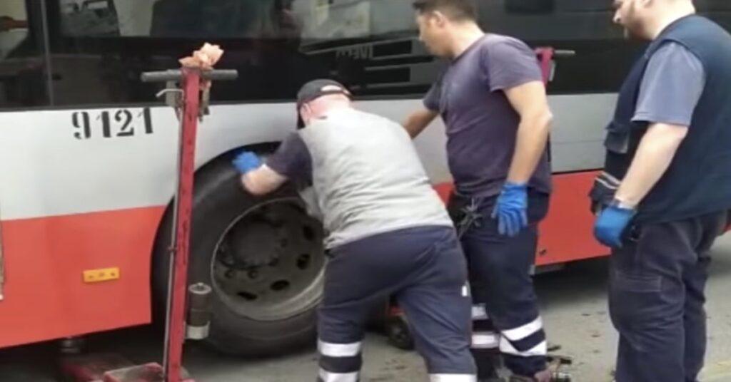 meccanici salvano gattino incastrato nella ruota