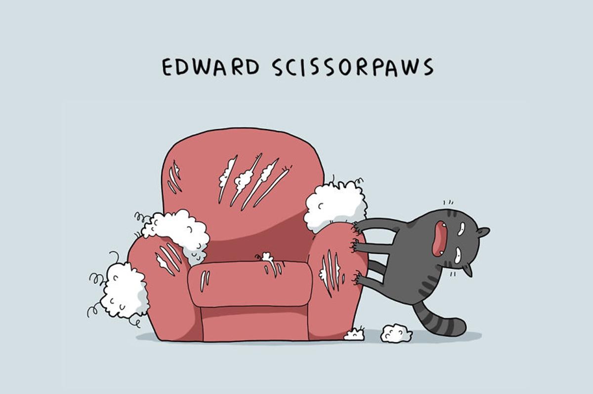 gatto taglia divano