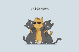 gatto molto attraente