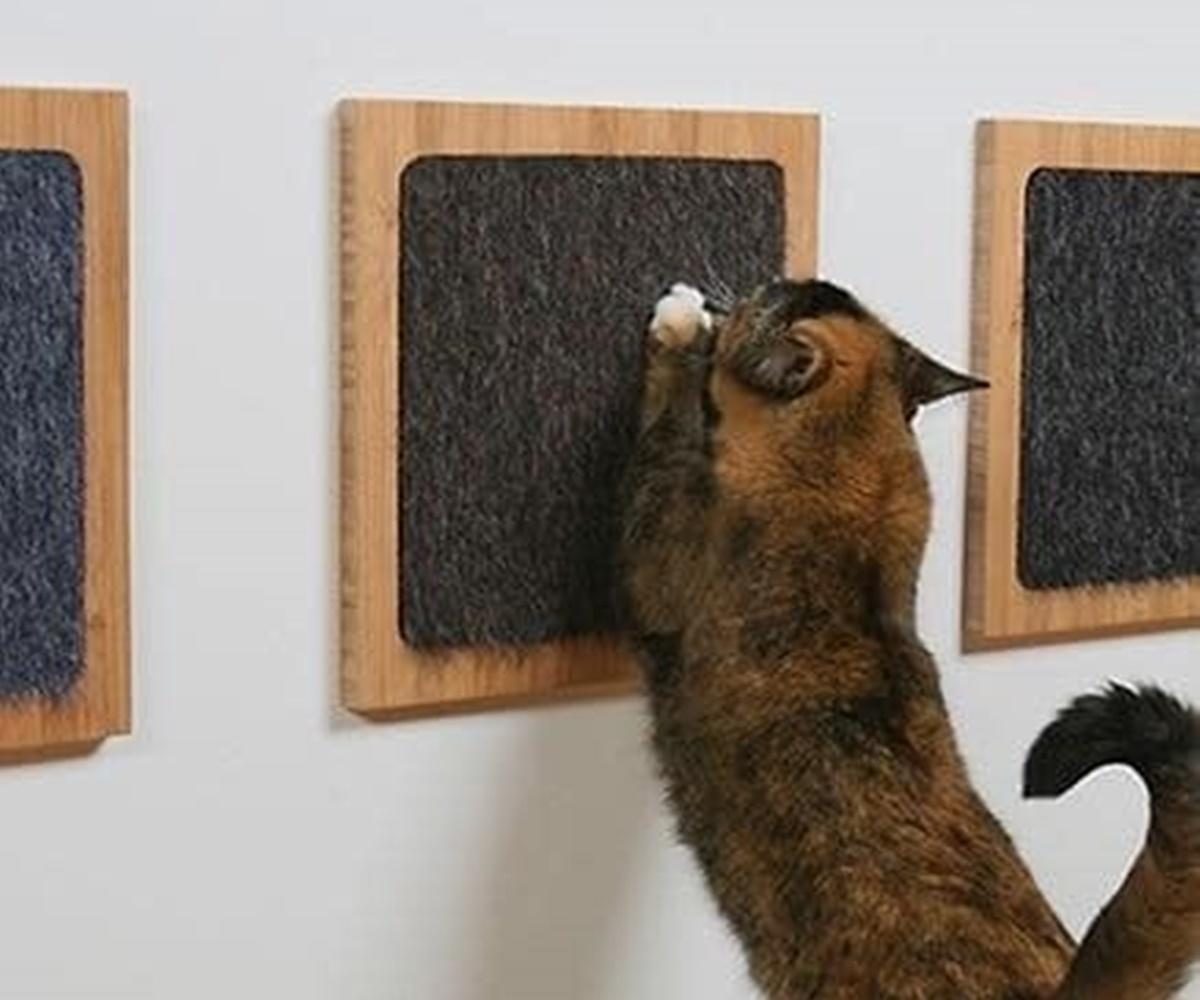 tiragraffi muro