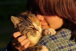 micio mamma abbraccio