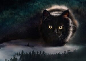 foto artistiche gatti giganti