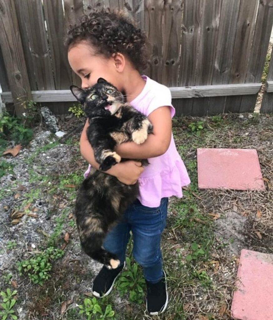 bimba abbraccia gatto