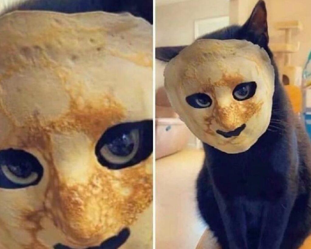 gatto nero con maschera
