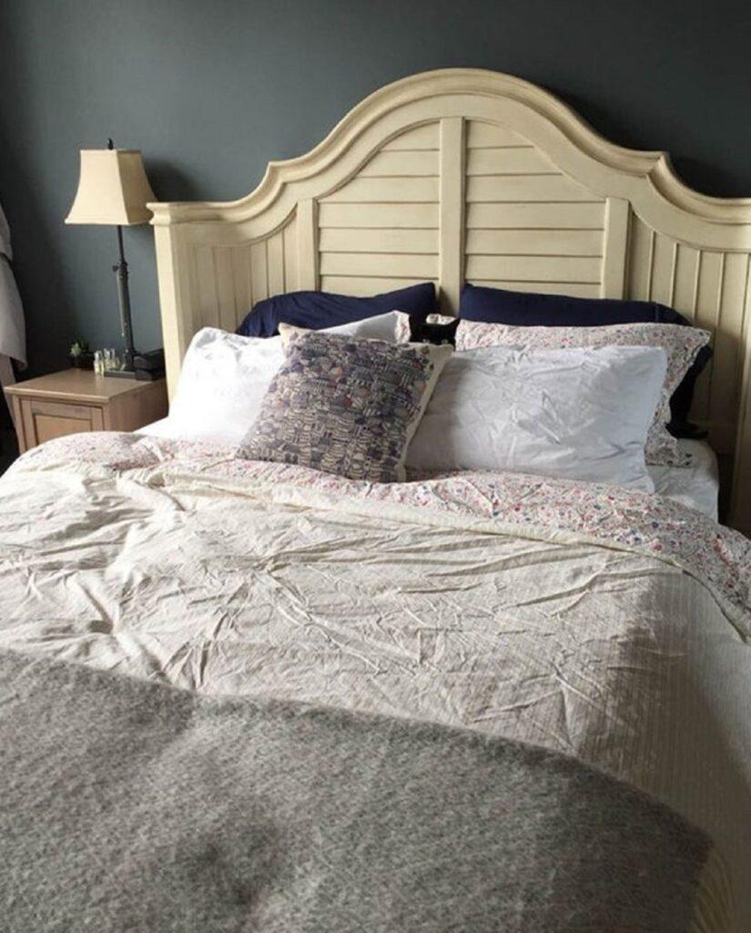 gatto dietro cuscino