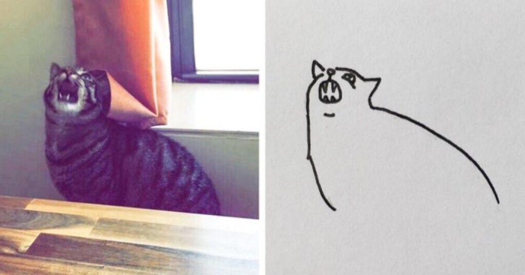 simpatici gatti disegno