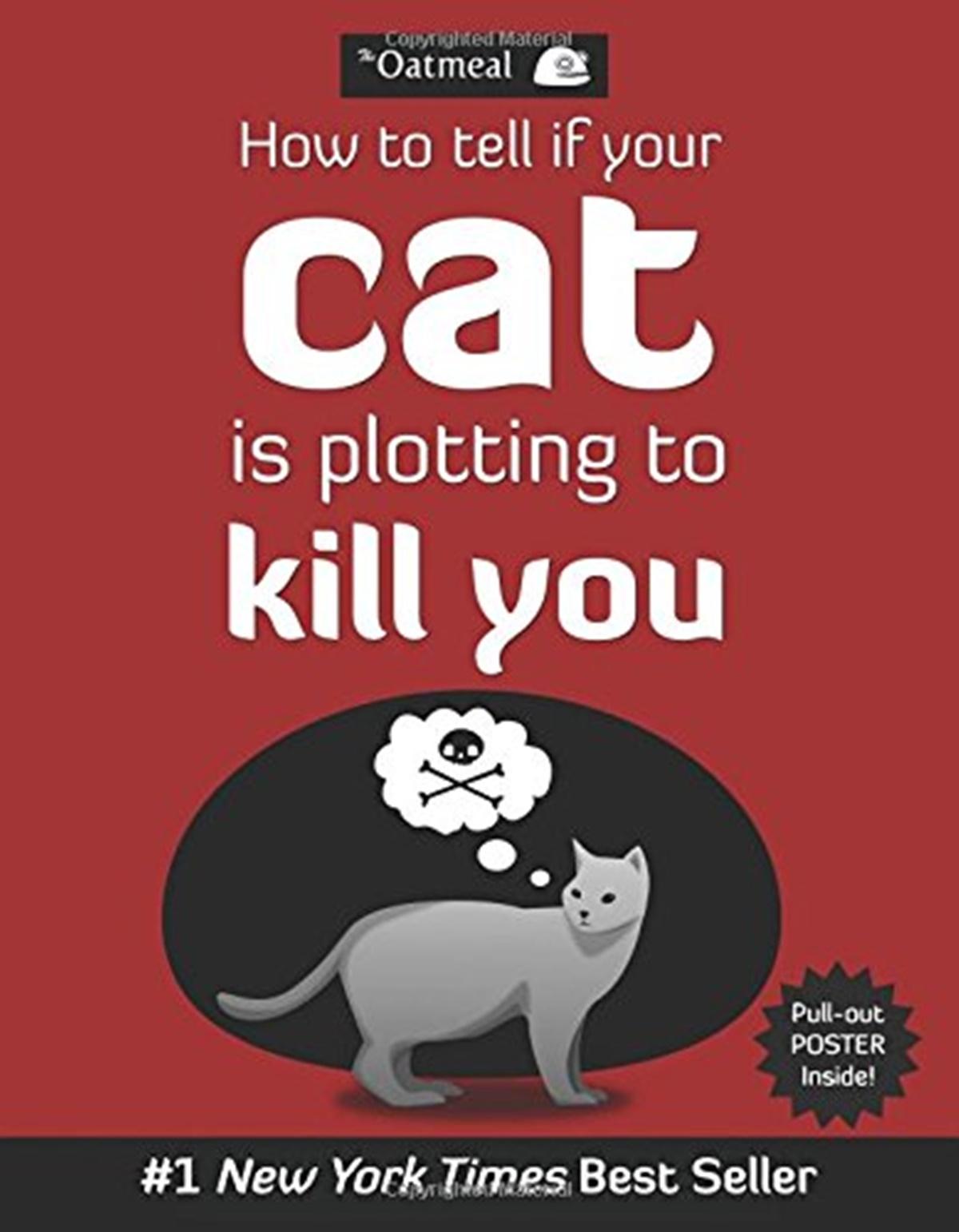 gatto killer