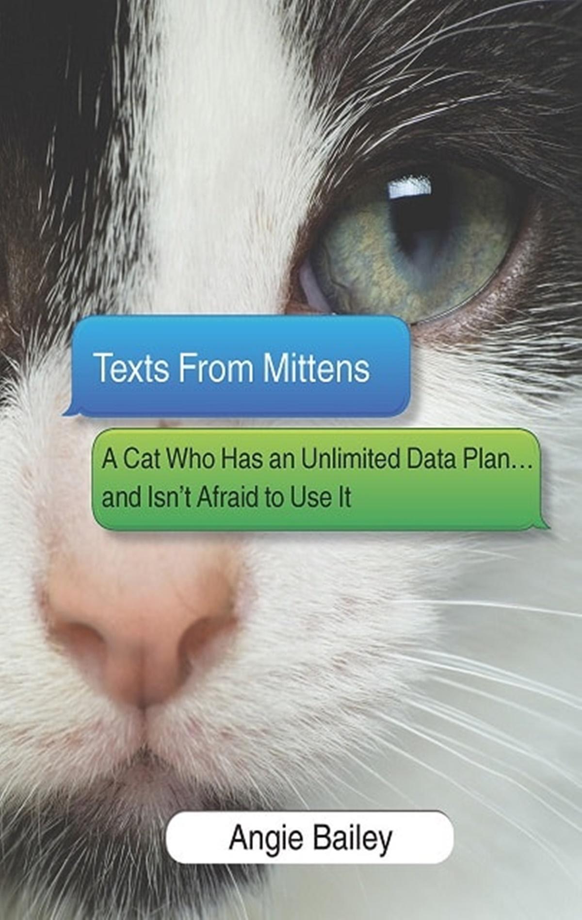 gatto messaggi