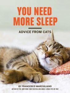 gatto ti dà consigli sul sonno