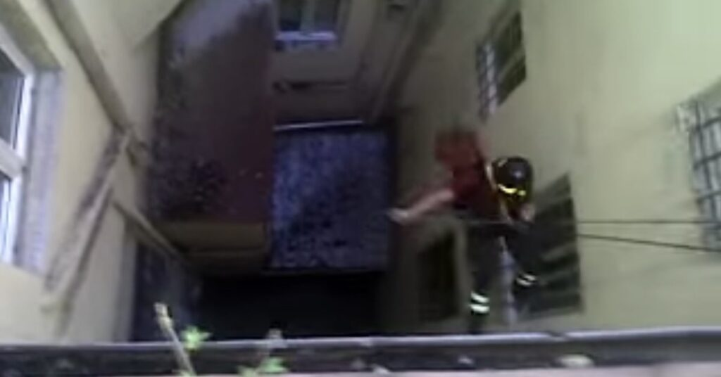 pompiere salva un gattino