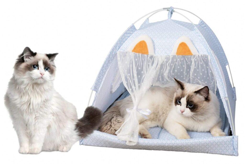 tenda estiva per gatti adulti