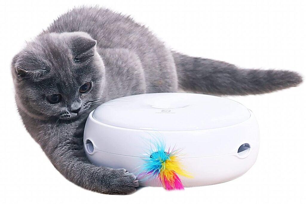 giocattolo interattivo per gatti