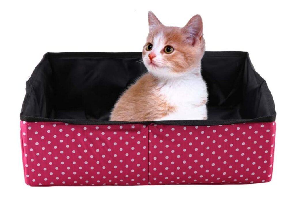 lettiera da campeggio per gatti