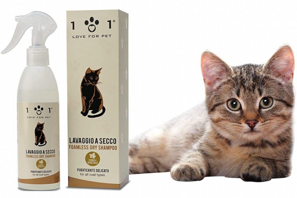 shampoo a secco per gatto