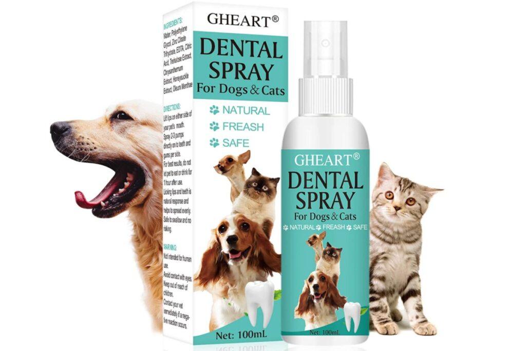 spray per pulire i denti del gatto