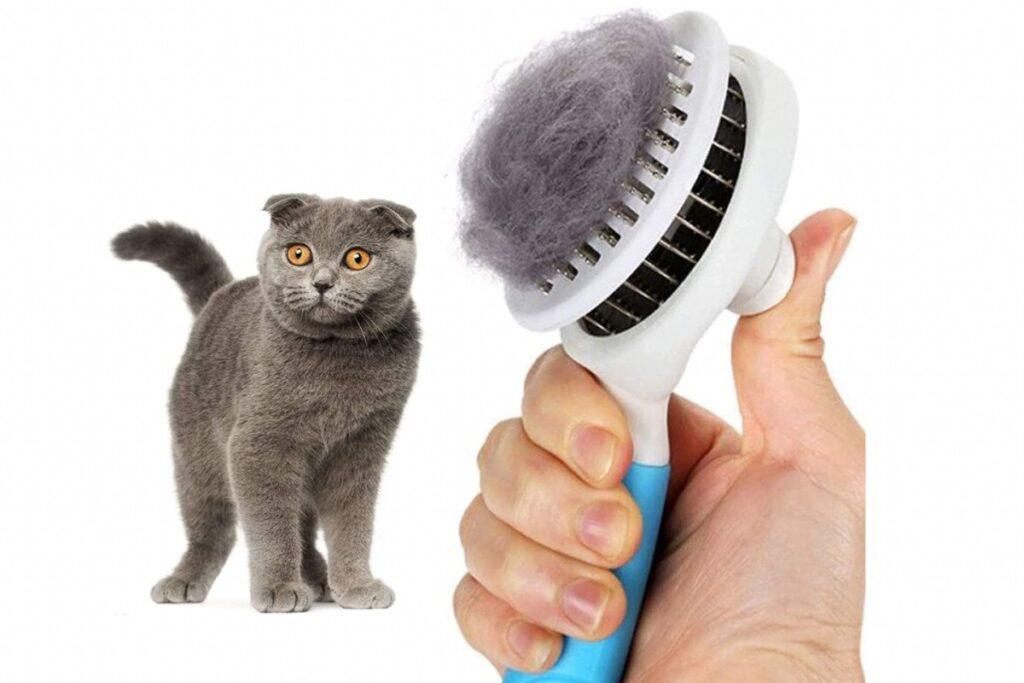 spazzola autopulente per gatti