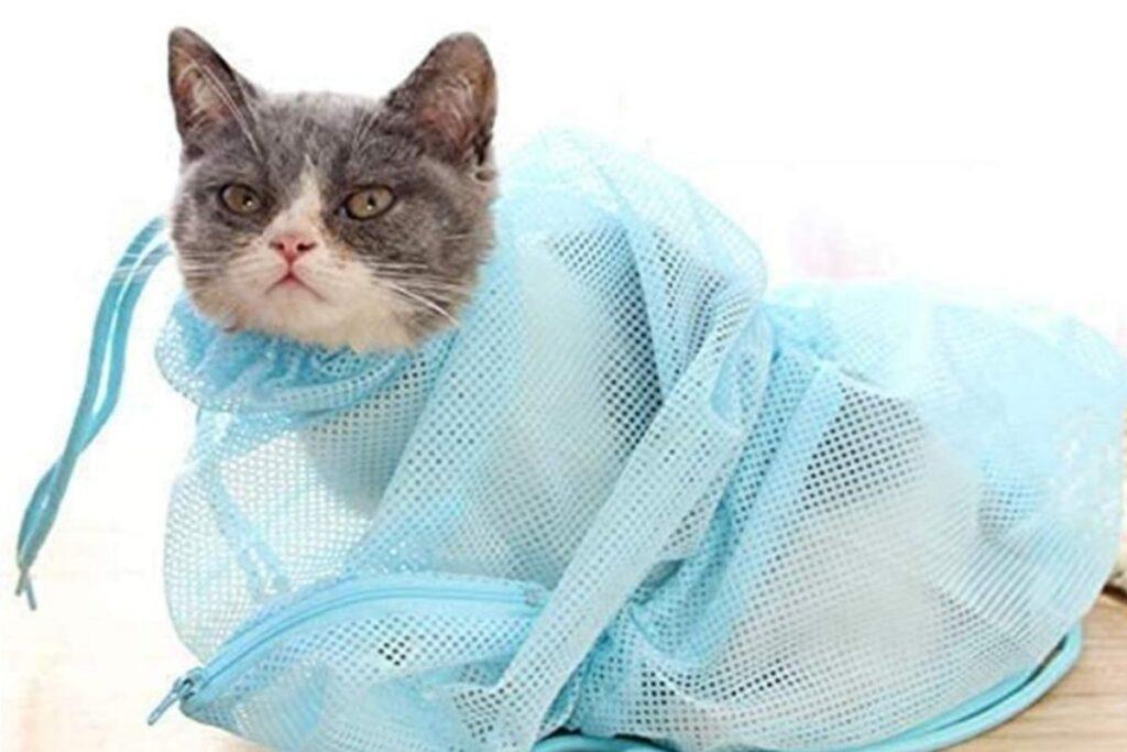 retina contenitiva per gatti