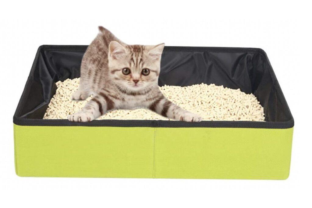 lettiera pieghevole per gatti