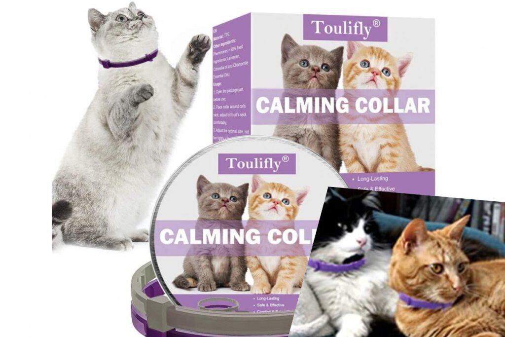 collare calmante per gatti