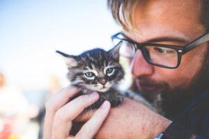 ragazzo con gattino