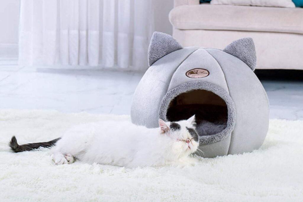 cuccia morbida per gatti