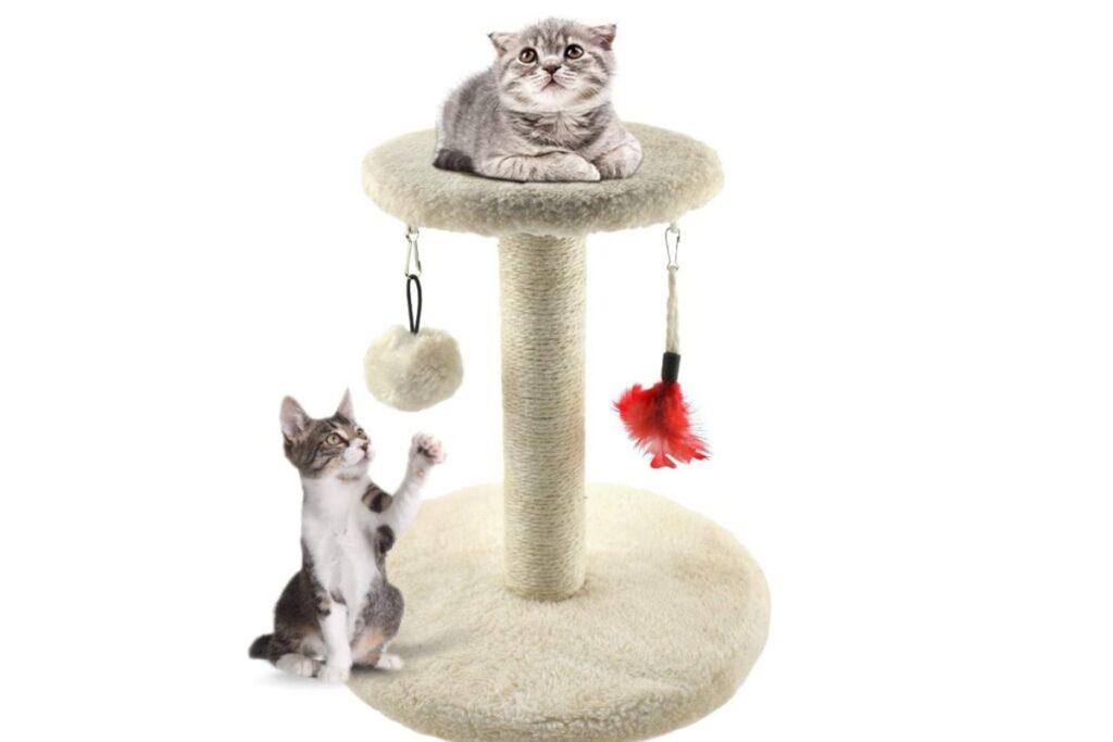 tiragraffi per gattini