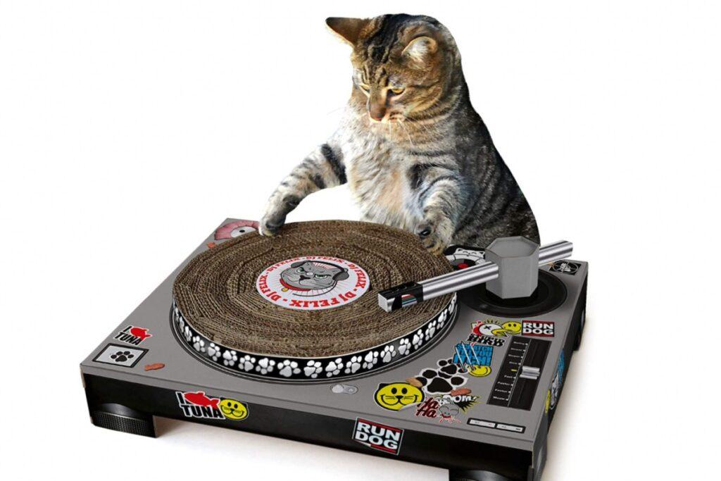 tiragraffi dj per gatto