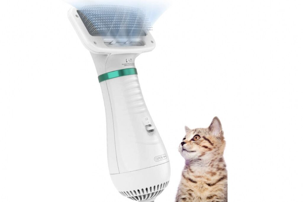 spazzola asciugatrice per gatto