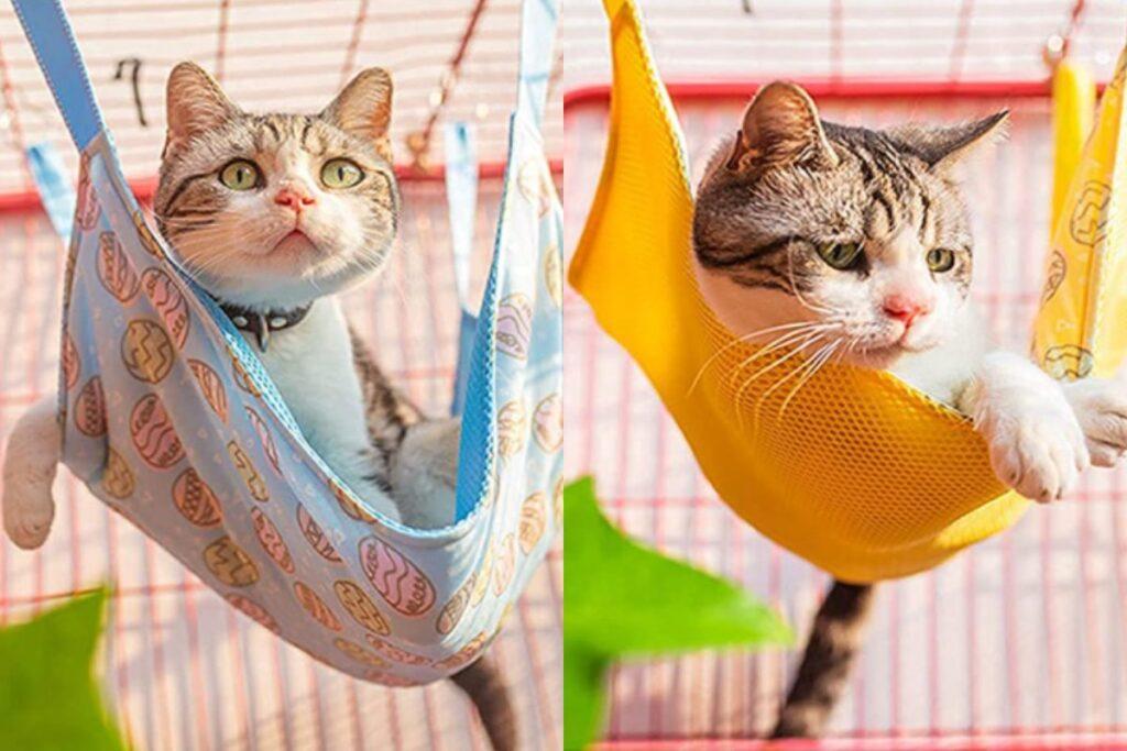amaca per gatti