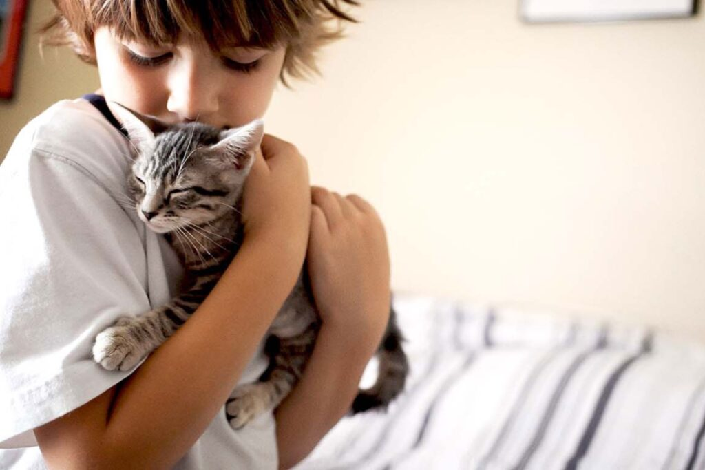 gattino e bimbo