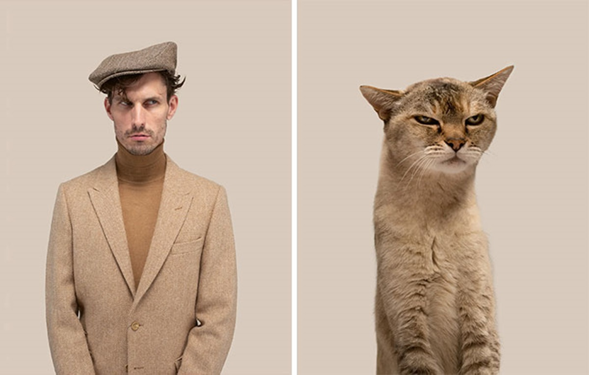 gattino artista