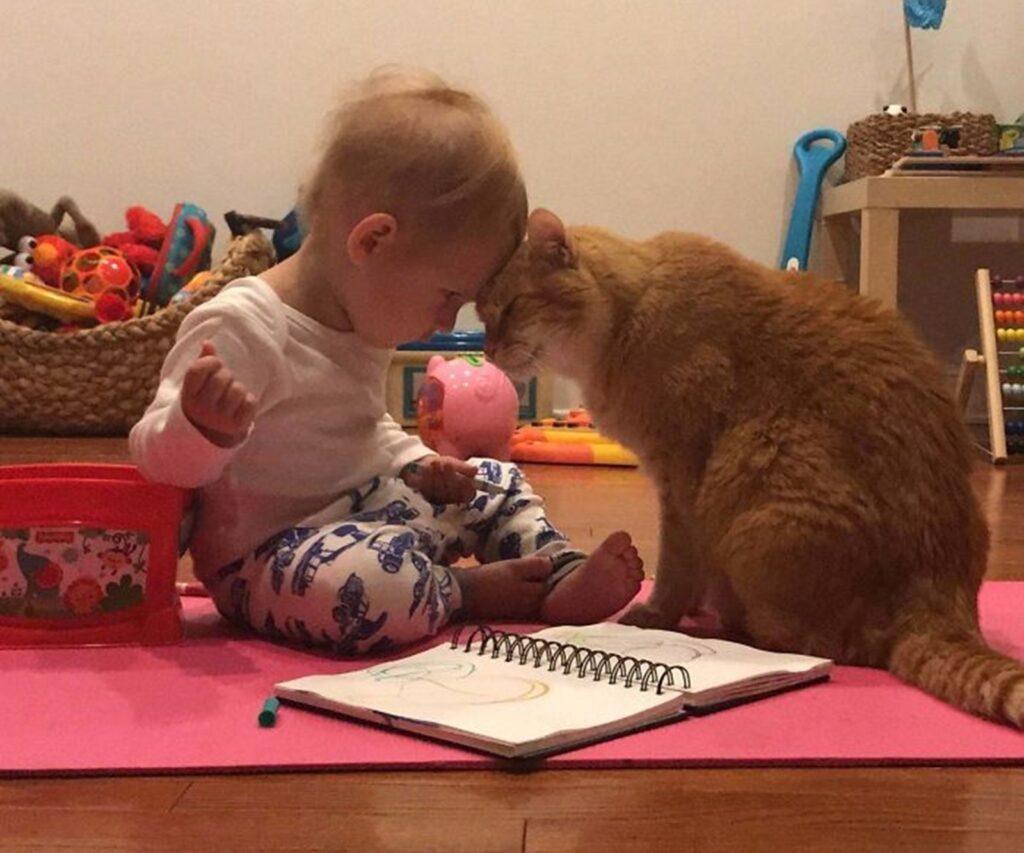 gatto gioca con bambina