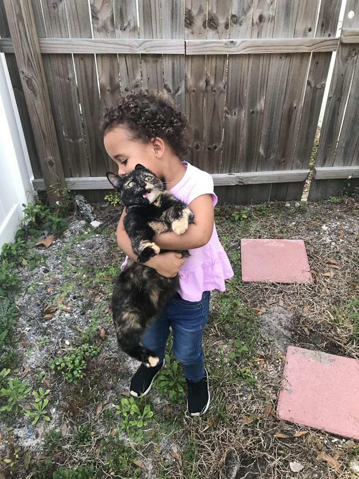 gatto abbraccio