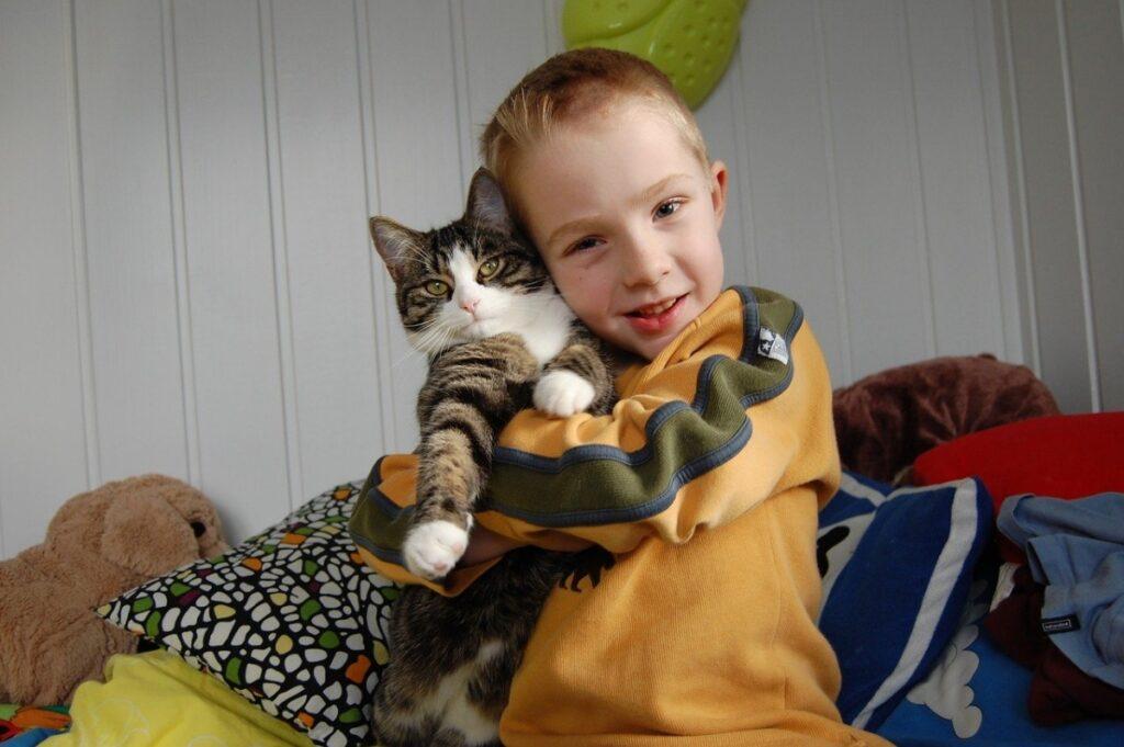abbraccio fratellino gatto