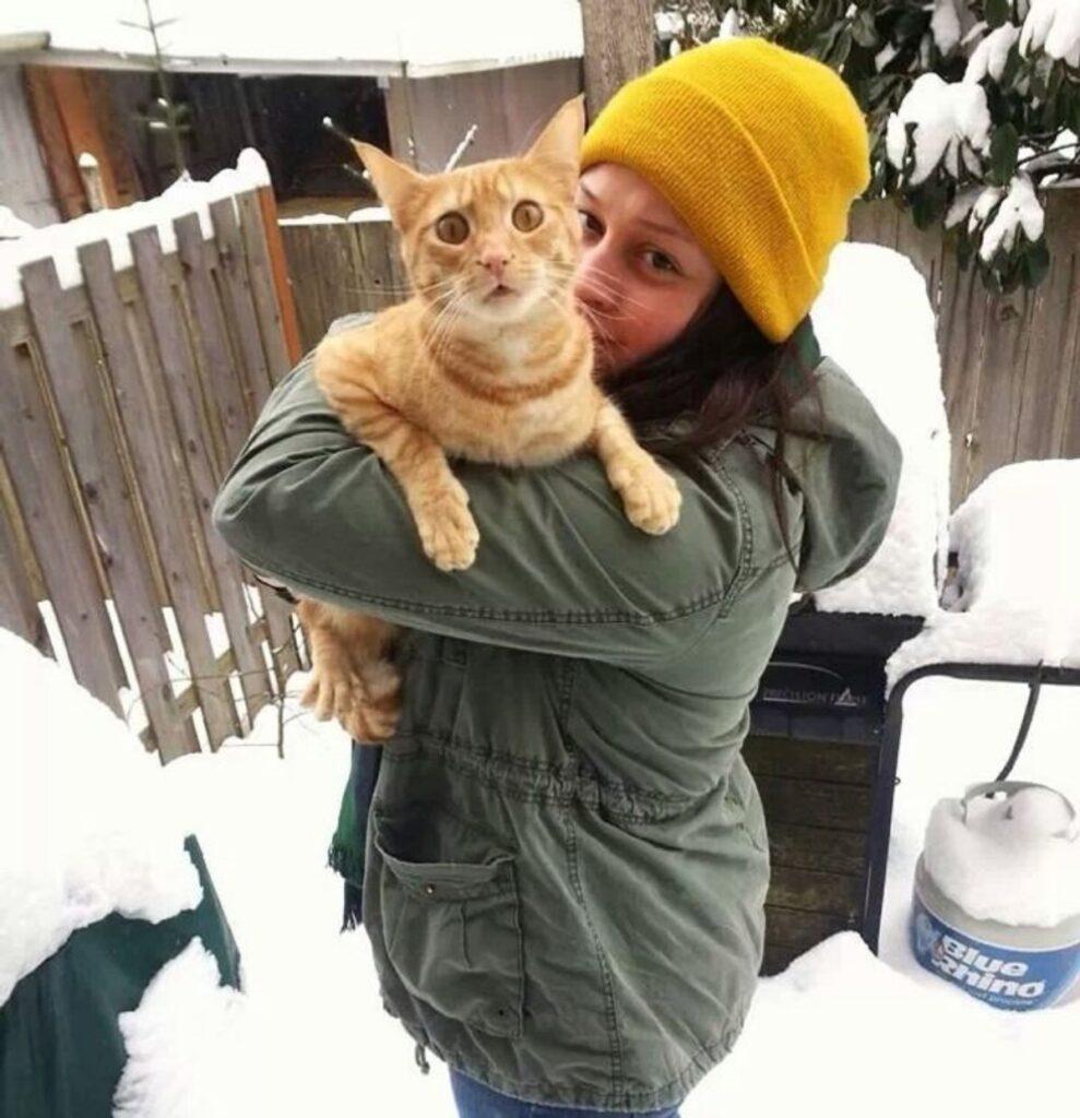 mamma abbraccio felino
