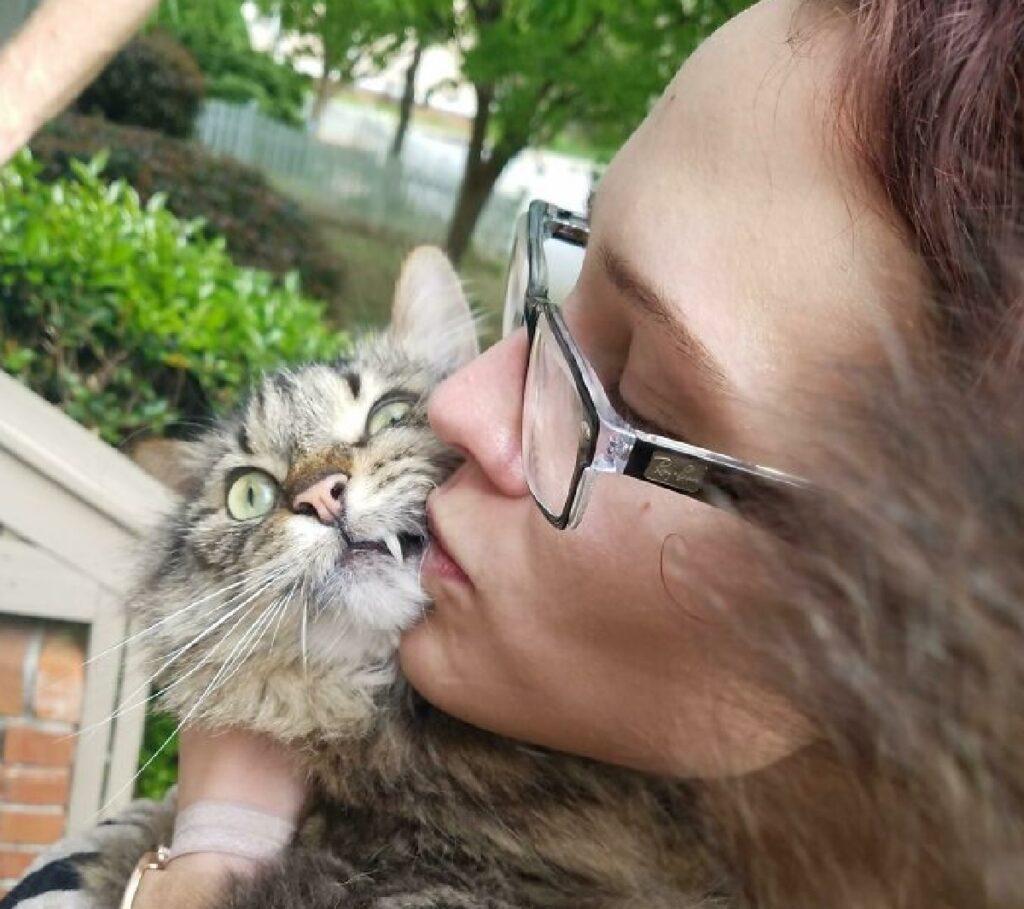 gatto bacio non apprezzato