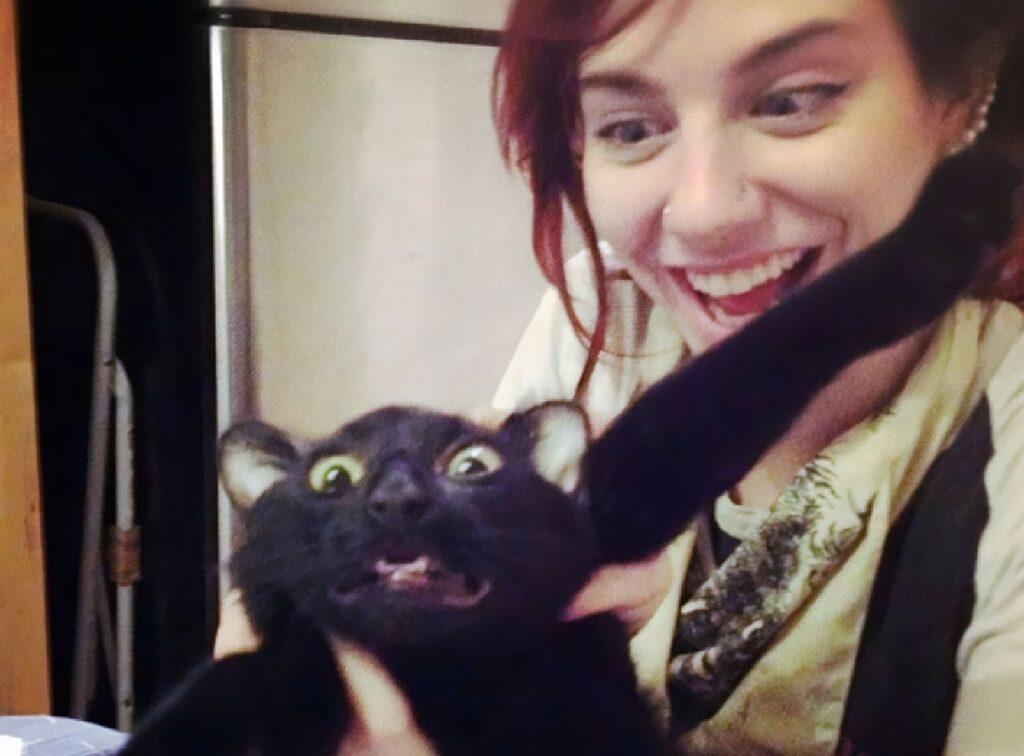 gatto nero preso in braccio