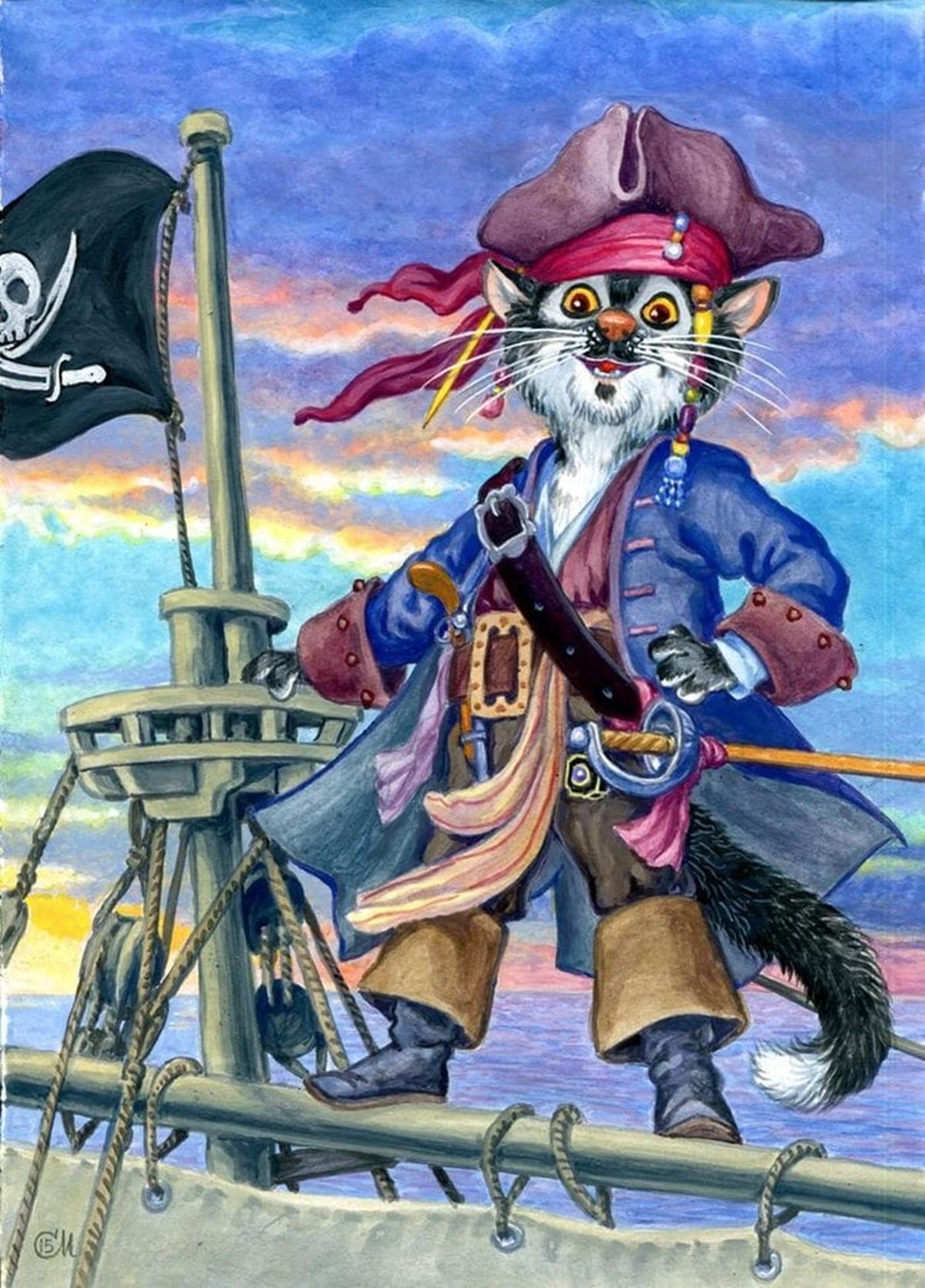 gatto pirata