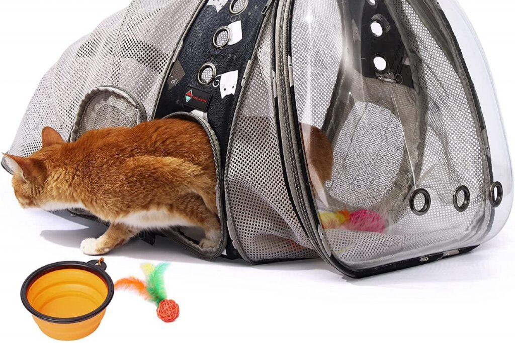 zaino per gatto