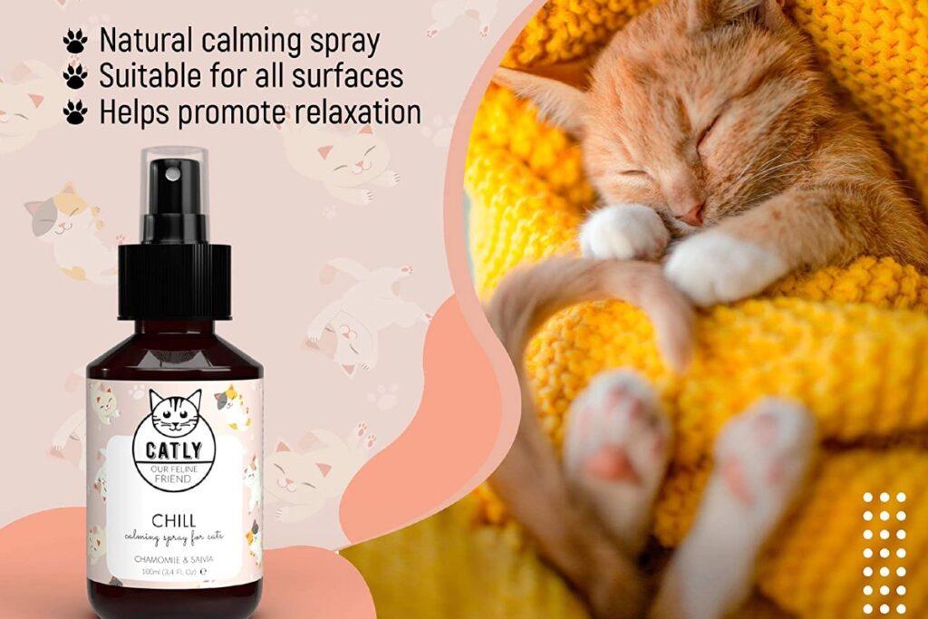 spray calmante per gatti