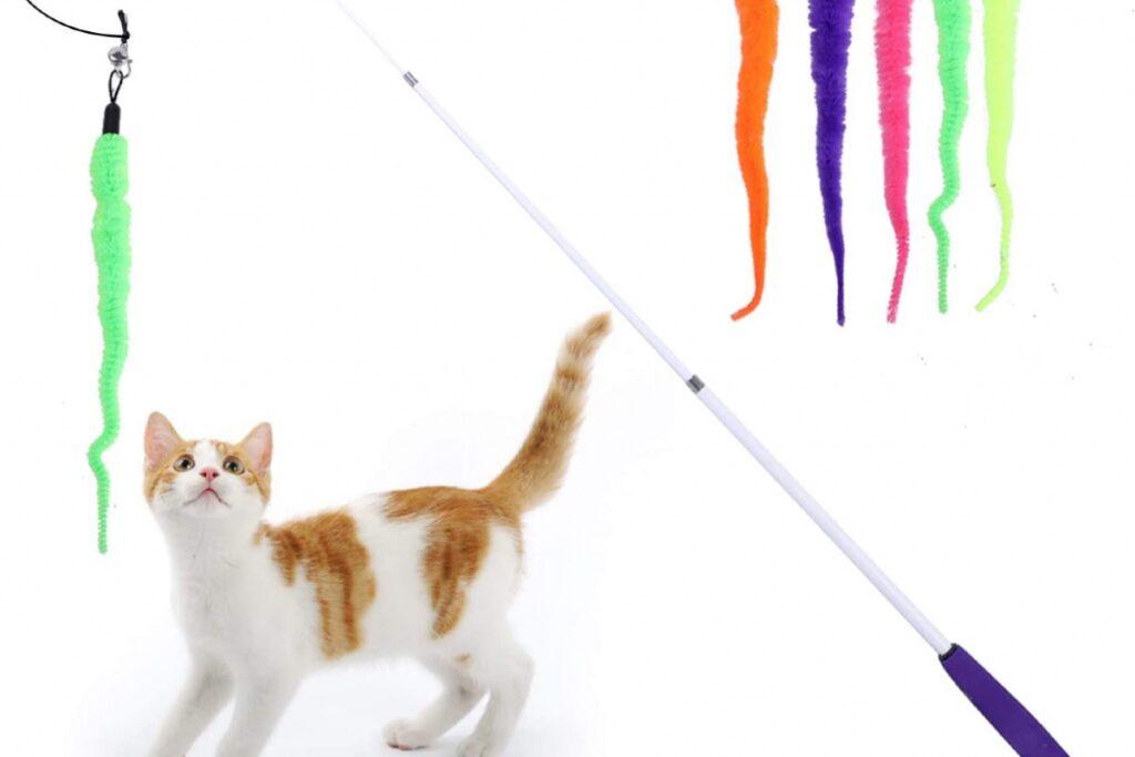 canna da pesca per gatti