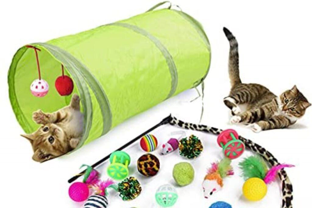 gatti che giocano con palline
