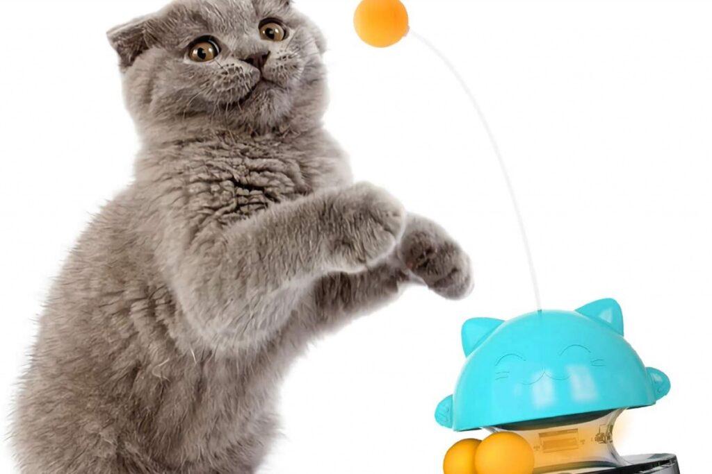 gioco lancia cibo per gatti