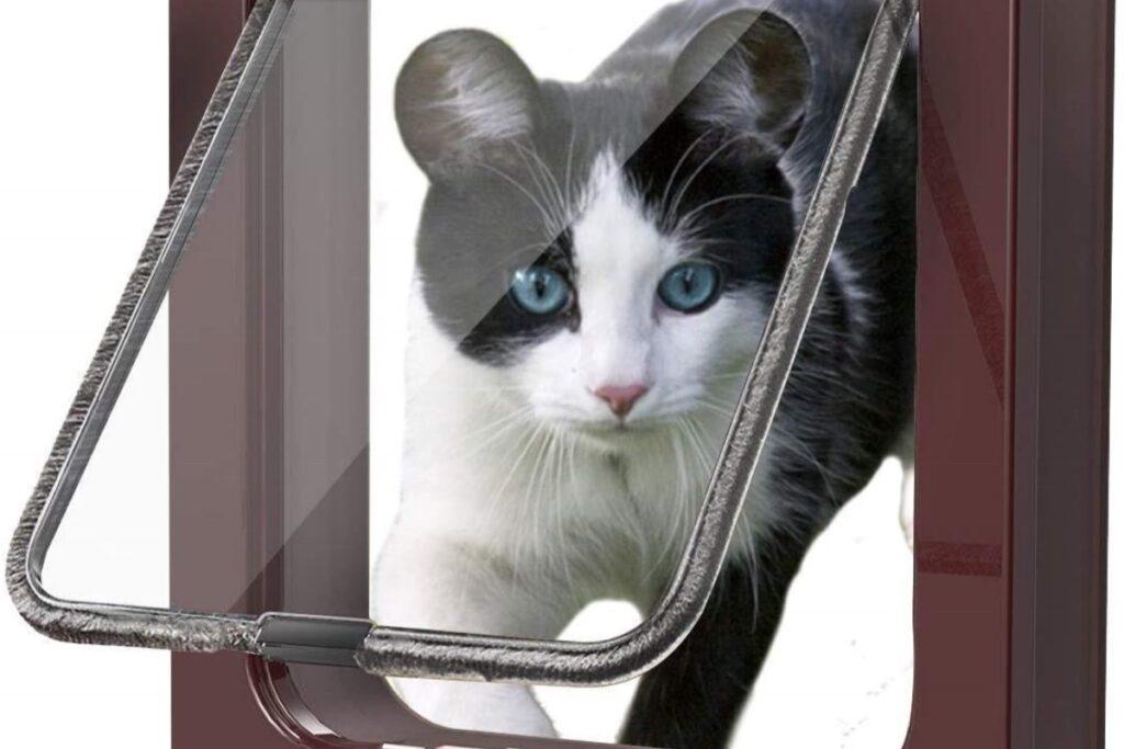 porticina per gatto