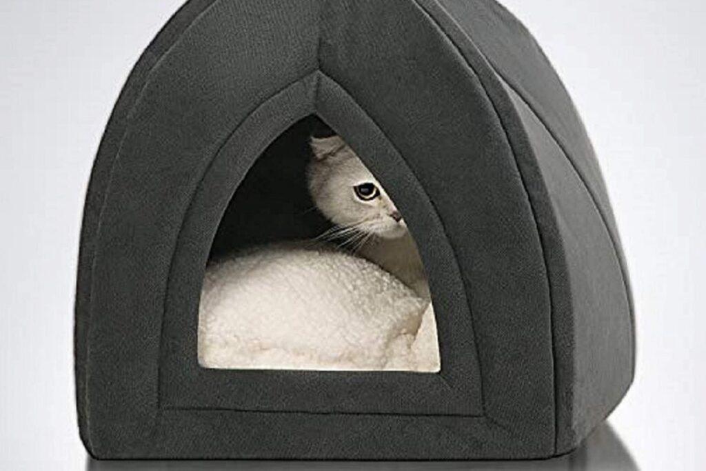 cuccia coperta per gatti