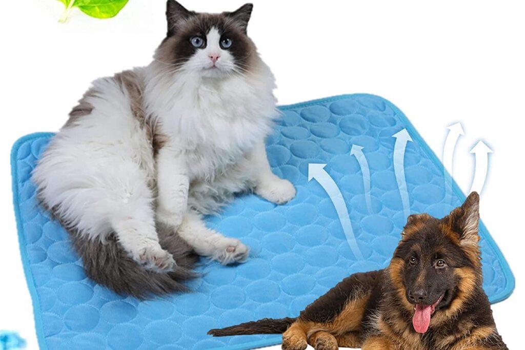 tappetino rinfrescante per gatto