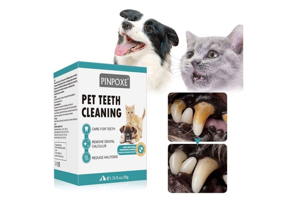 polvere per pulire i denti del gatto