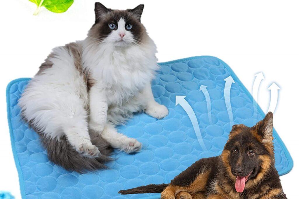 gatto su tappetino refrigerante