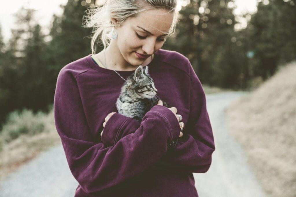 gattino in vacanza